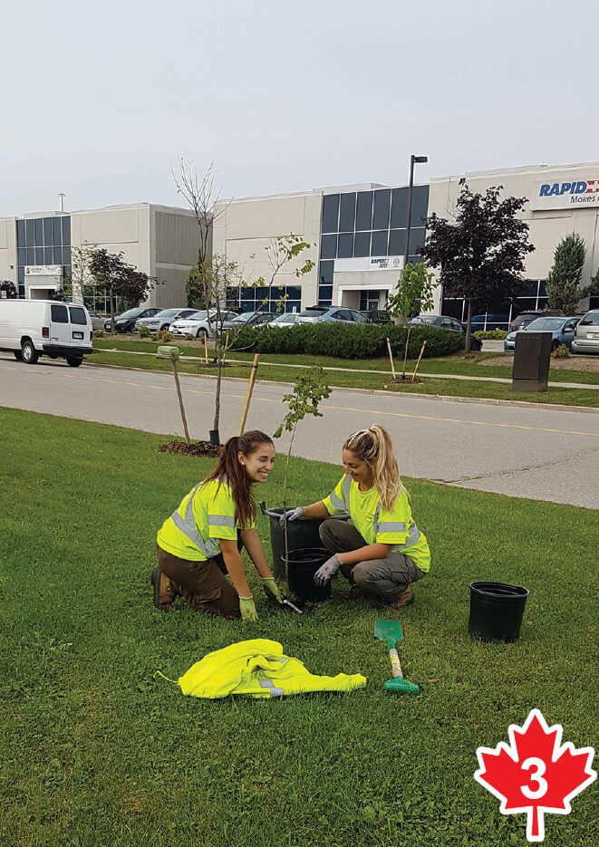Two girls planting a maple tree