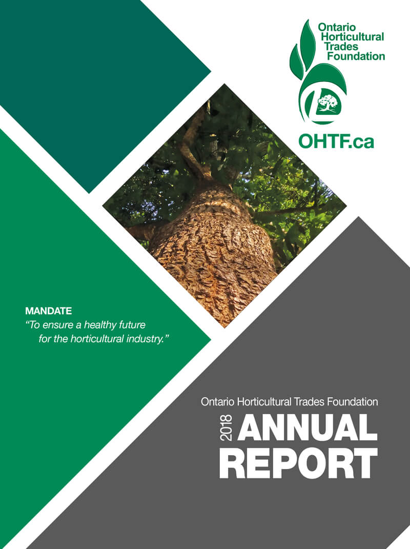 2018 foundation report cover
