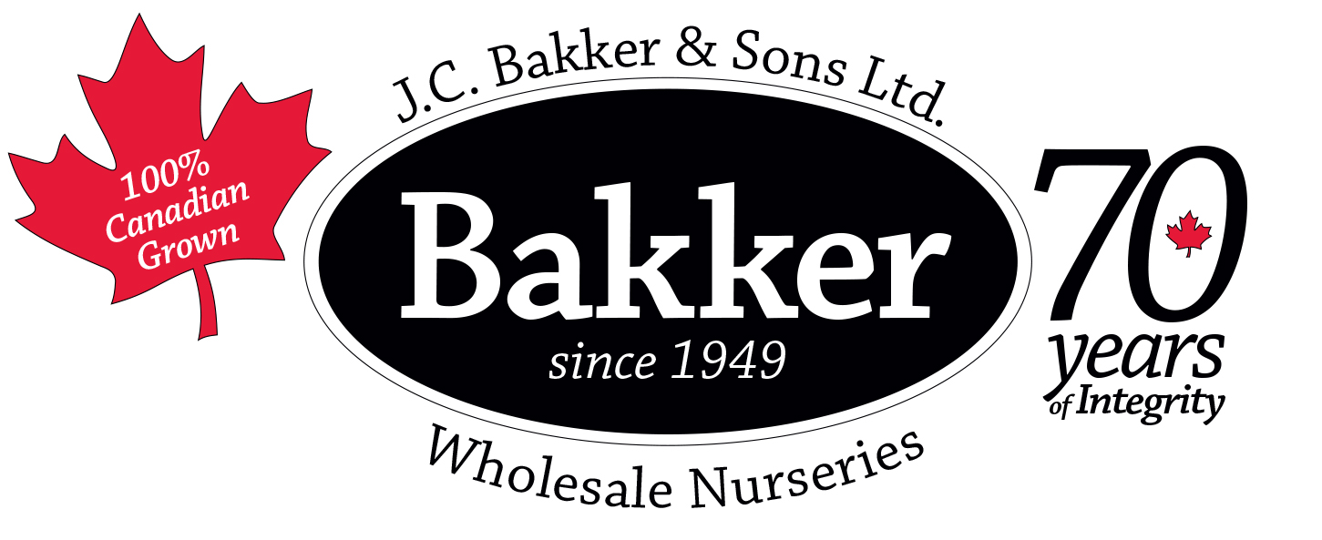 Jc Bakker & Sons Ltd.