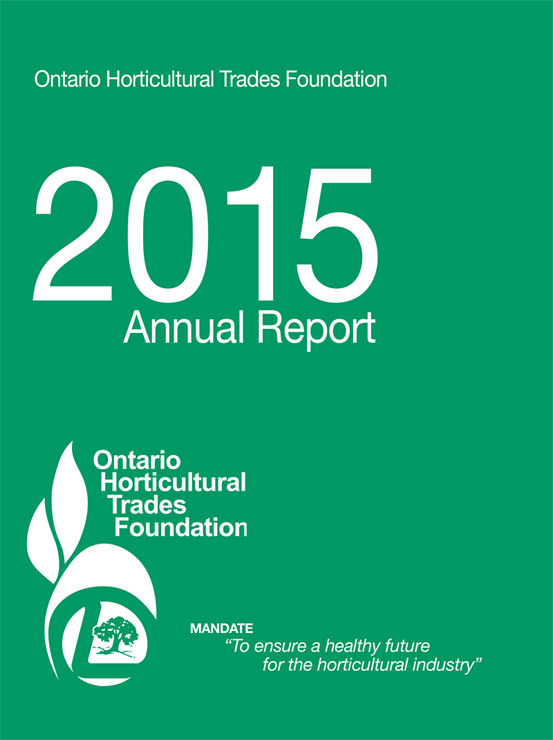 2015 foundation report cover