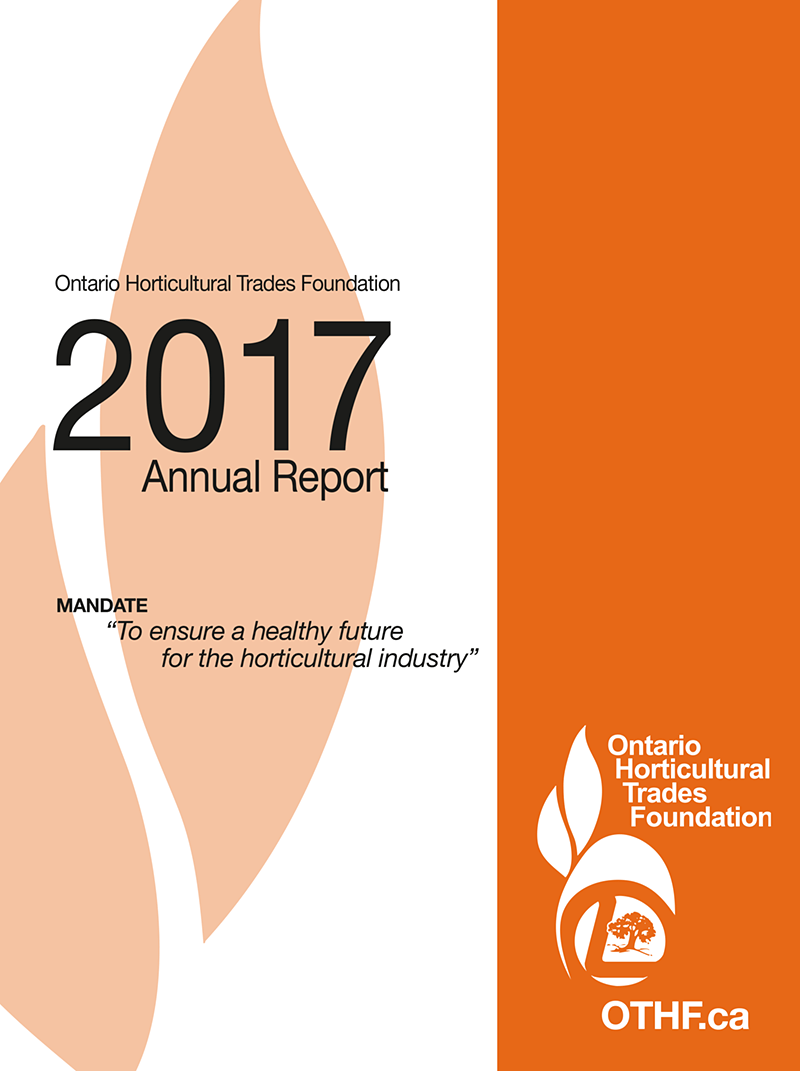 2017 foundation report cover