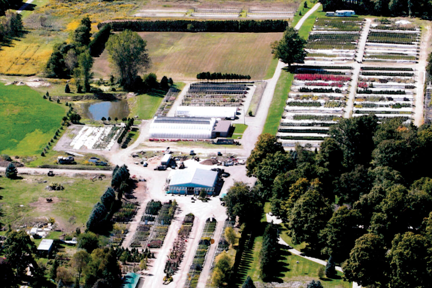 aerial view of a nursery operation