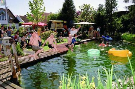 A dip in the pond landscape green for life for Koi pond swimming pool conversion