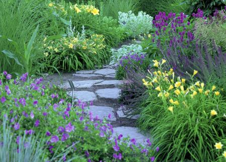 Artistic Perennial Combinations Landscape Ontario