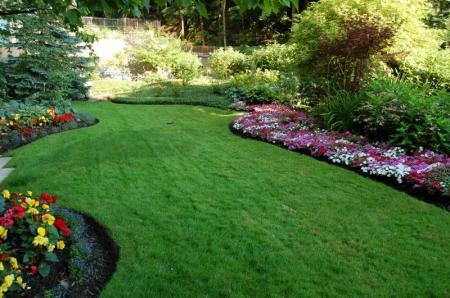 Lawn And Turf Benefits Landscape Ontario