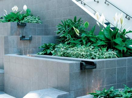 Interior landscaping user guide landscape for Interior landscaping ideas