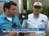 Reporter interviewing staff. Tree valley garden centre stouffville