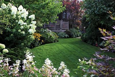 green lawn and flowering shrubs
