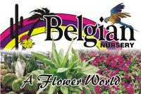 Belgian Nursery Ltd
