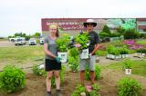 University of Guelph students Leigh Cogar and Will MacKenzie planting the hydrangea trial at LO.