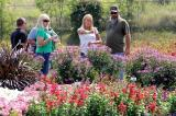 Those attending the annual trial gardens open house had lots to see, from new annual introductions to perennial beds and roses.