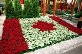 The Canadian flag created from kalanchoe grabbed a great deal of attention at LO's feature garden at Canada Blooms.