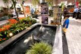Canada Blooms provides the best environment to create new gardening enthusiasts.