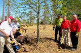 A ceremonial planting of trees has politicians and volunteers replace trees lost in the Goderich tornado last year.