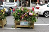 A winning planter created by Green Valley Landscaping.