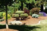 This garden created by Hunter Home and Garden was one of many to wow visitors on the Gardens of Distinction Tour.