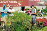 The annual trial gardens open house drew both industry and consumers to view what will be on the shelves next year.