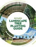 Ontario Landscape Tree Planting Guide