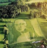 Drones helped mow a Mona Lisa portrait  on a massive grass canvas.