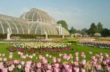 Virtually tour the Royal Botanic Gardens Kew in London, England during day two of the Congress Conference. Photo courtesy of RBG Kew.