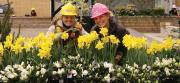 Canada Blooms is the perfect venue for young people to get inspired by our profession.