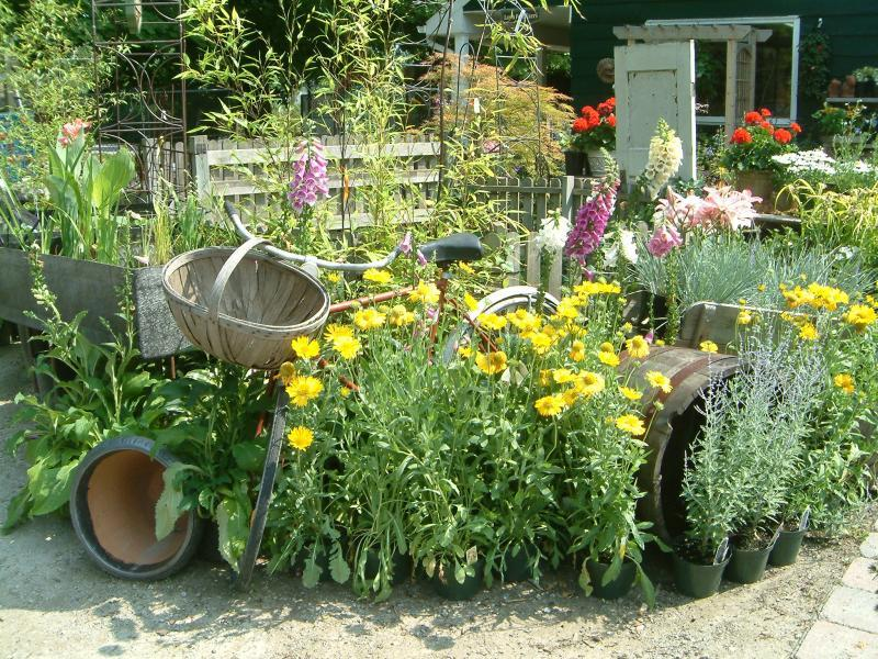 2006 - Outstanding Display of Plant Material - Annuals and/or Perennials - Perennial display by store entrance