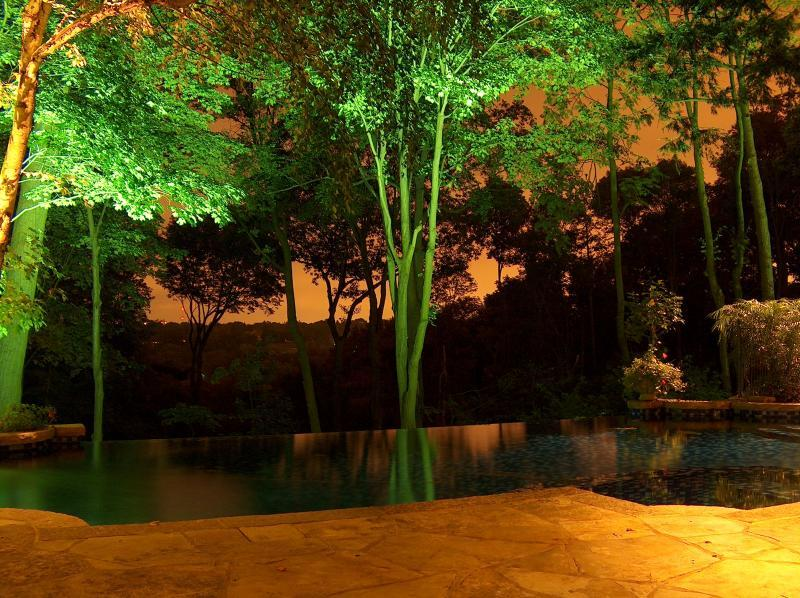 2006 - Landscape Lighting Design & Installation - Over $30,000 - *Negative Edge Pool - Back Yard (*Plaque)