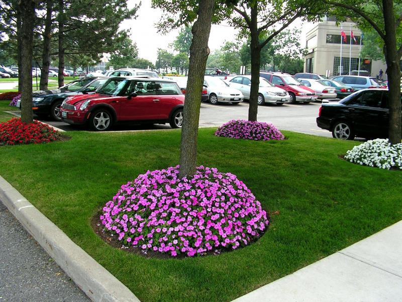 2007 - Corporate Building Maintenance -  Over 2 acres  - Visitors Parking at 6711 Mississauga Rd.