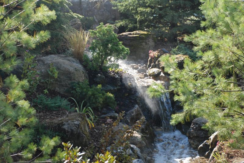2009 - Water Features  - Upper falls