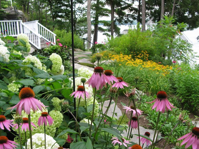2008 - Non-Turf Maintenance  - hot tub gardens