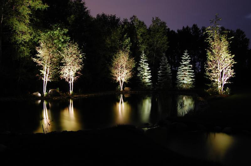 2008 - Landscape Lighting Design & Installation - Over $30,000