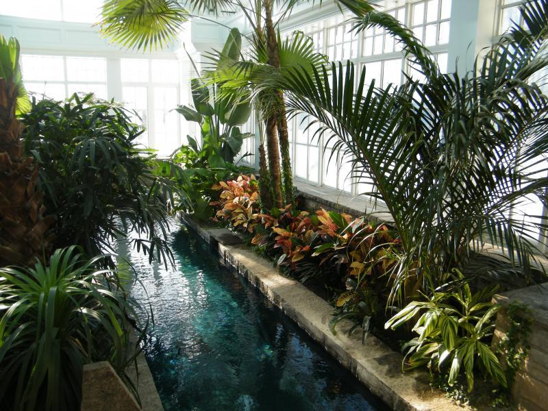 2009 - Interior Plantscaping Maintenance - Waterfall/Hot tub from Great room