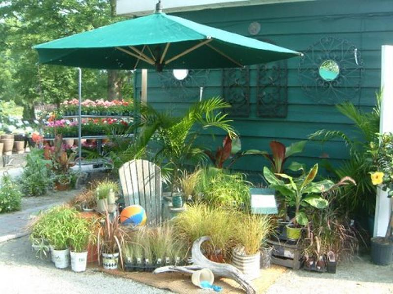 2010 - Outstanding Display of Plant Material - Annuals and/or Perennials - Life's a beach - plaque