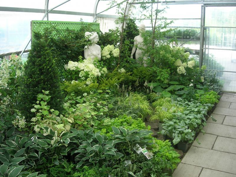 2011 - Outstanding Display of Plant Material - Annuals and/or Perennials - A lush oasis in the shade!