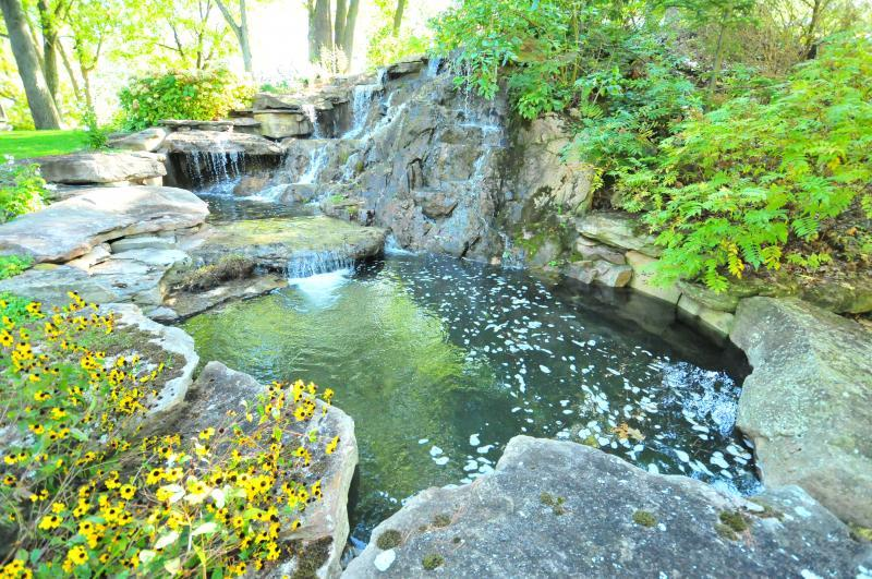 2012 - Water Features  - Natural Flow 1