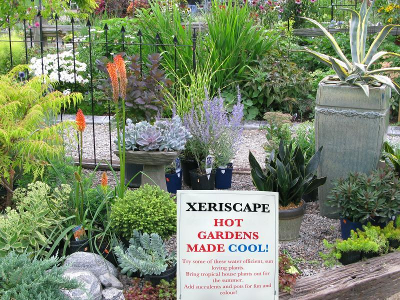 2013 - Outstanding Display of Plant Material - Annuals and/or Perennials
