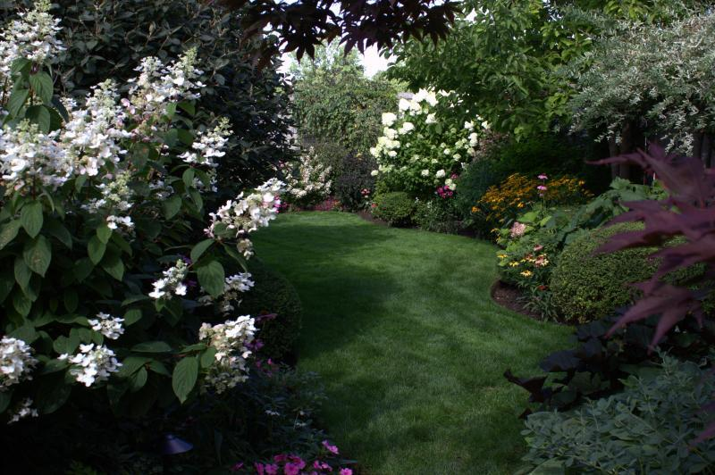 2014 - Private Residential Maintenance - Under 15,000 sq ft lot size - this photo was taken at the end of August  as apposed to  the one of the similar vantage point that was in late june. the hydrangea are in full bloom