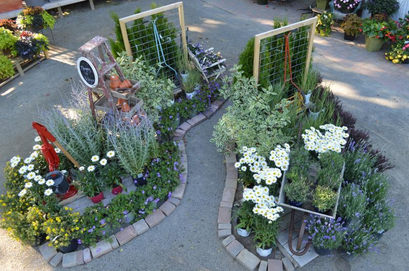 2014 - Outstanding Display of Plant Material - Annuals and/or Perennials