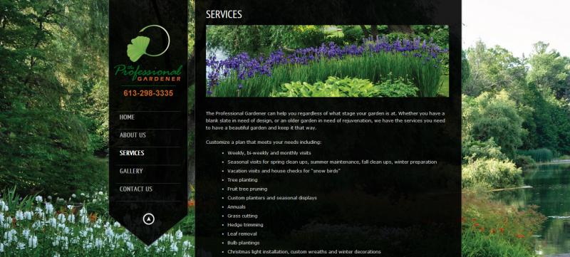 2014 - Web Sites  - web site