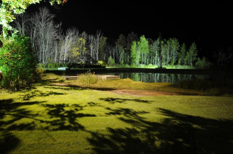 2014 - Landscape Lighting Design & Installation - Over $30,000 - Back Pond Showing Reflections & Shadows(Plaque)