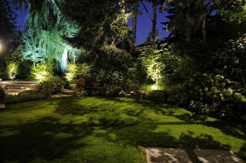 2014 - Landscape Lighting Design & Installation - $10,000 - $30,000 - Down Lighting from large trees silhouetting onto grass- Back Yard (Plaque)