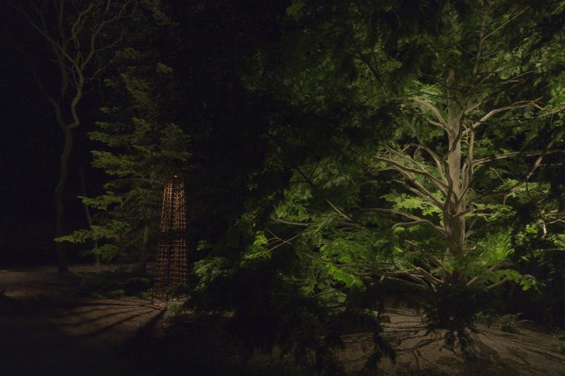 2015 - Landscape Lighting Design & Installation - $10,000 - $30,000 - Dawn Redwood and Rustic Art Piece