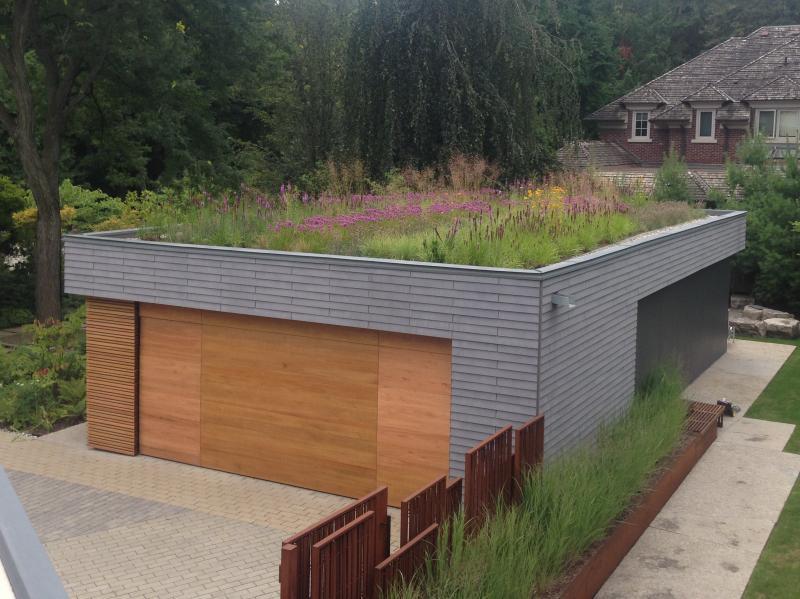 2015 - Balcony or Rooftop Garden - Garage roof, summer blooming 2
