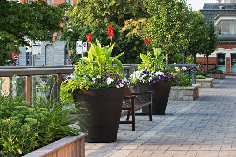 2015 - Multi Residential Maintenance - Under 2 acres - Seasonal Planters