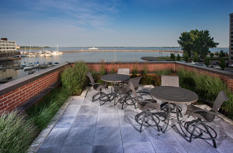 2015 - Non-Turf Maintenance  - Rooftop Garden Overlooking The River