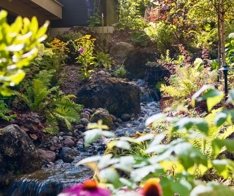 2018 - Water Features  - Detail shot of cascading section of stream.