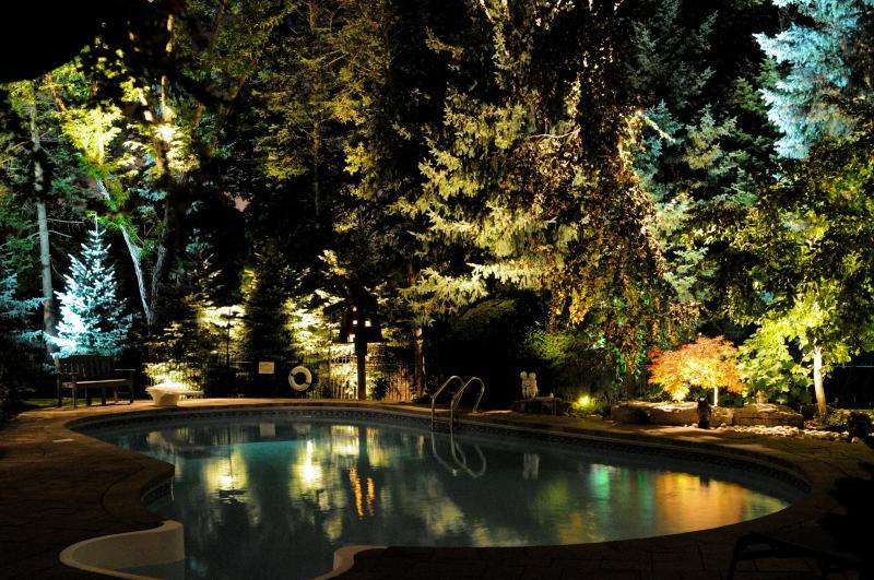 2018 - Landscape Lighting Design & Installation - $10,000 - $30,000 - Back Yard Pool