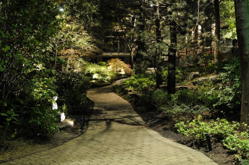 2018 - Landscape Lighting Design & Installation - Under $10,000 - Side Yard